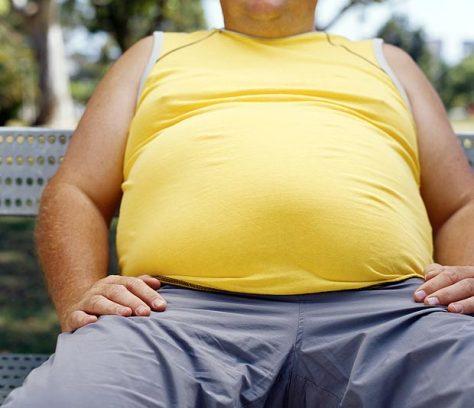 fat_1831026a